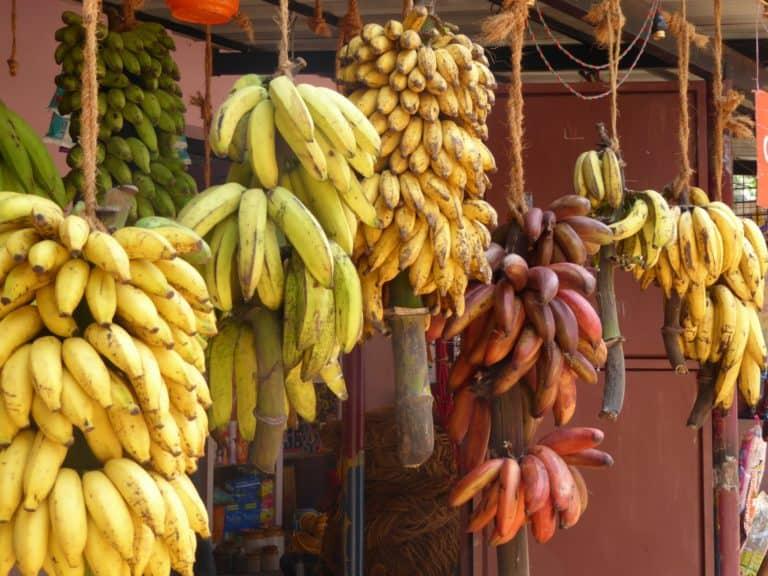 בננה ערך תזונתי וקלוריות