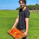 פרוזן יוגורט ביתי: מתכון קל לארוחת ביניים מלאת בריאות